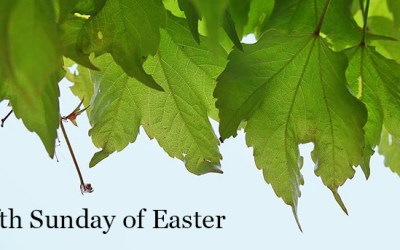 May 2, 2021 – Fifth Sunday of Easter