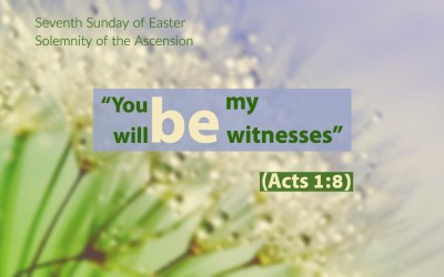 May 16, 2021 – Seventh Sunday of Easter (in some dioceses: Solemnity of the Ascension)