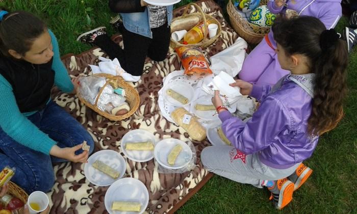 picnic/pastrati mediul curat