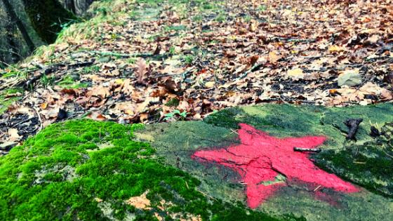 Trekking a Strabatenza sentiero del Partigiano Janosik foreste casentinesi