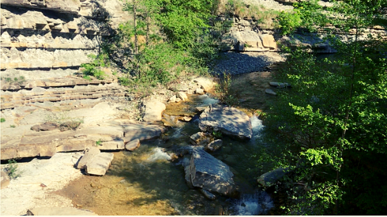 Bidente di Pietrapazza fiume che passa vicino a Cà di Veroli foreste casentinesi