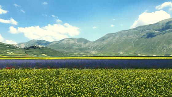 Monti Sibillini a passo lento oltre il sisma esperienze local