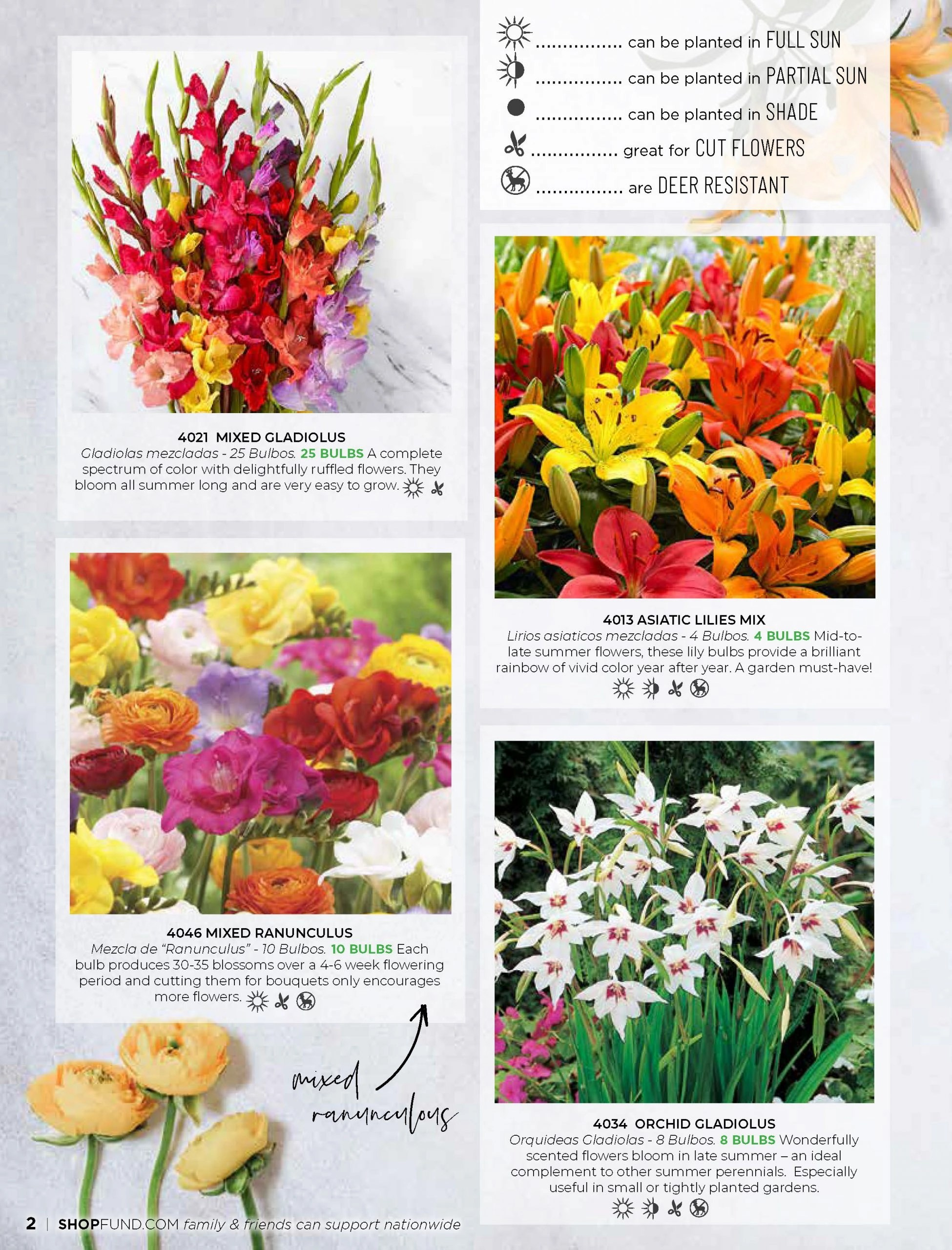 Believe Spring Catalog_Page_02