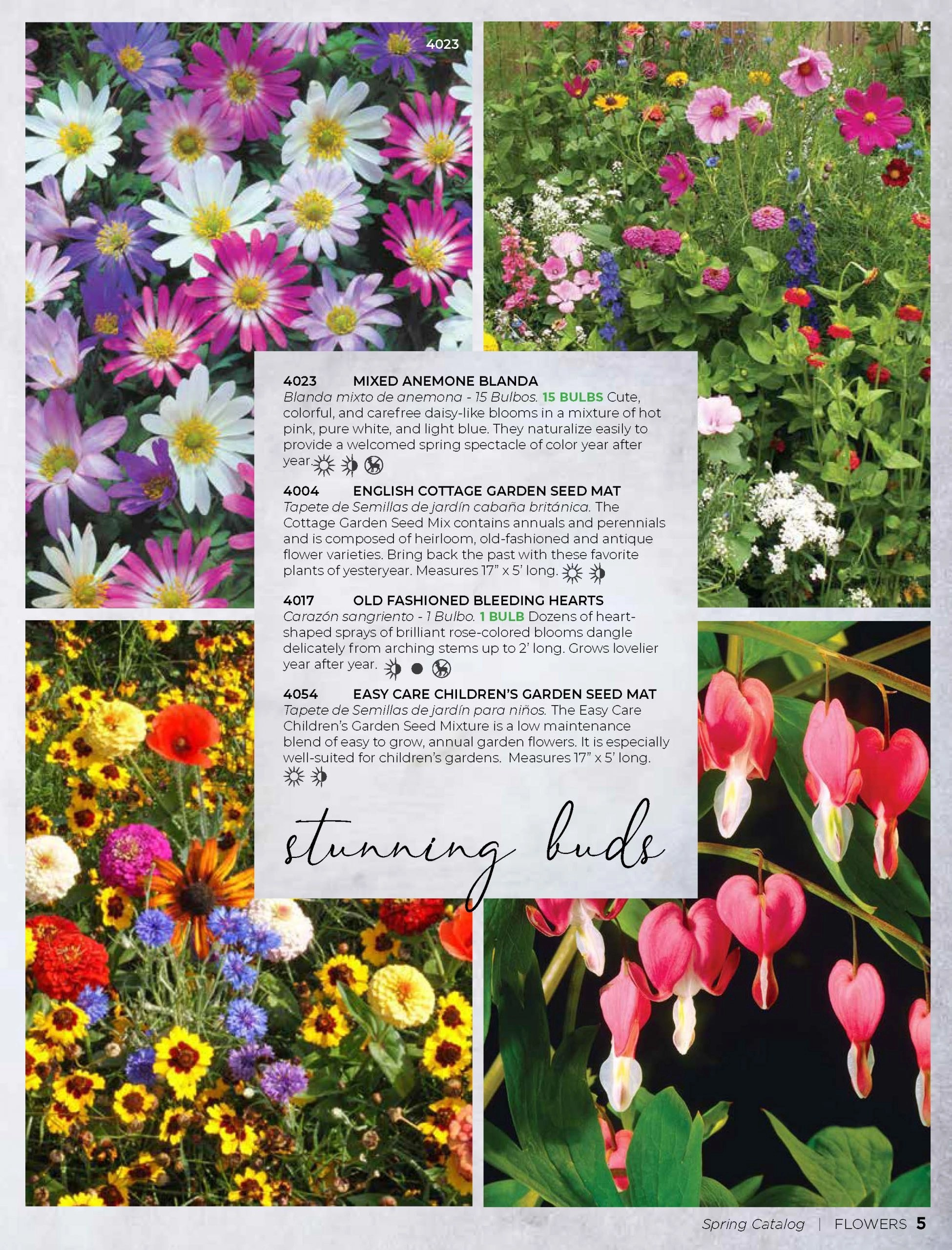 Believe Spring Catalog_Page_05