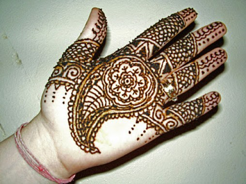 Superb Pakistani Eid Ul Adha Mehndi Designs 2014 2015 for Hot Girls (2)