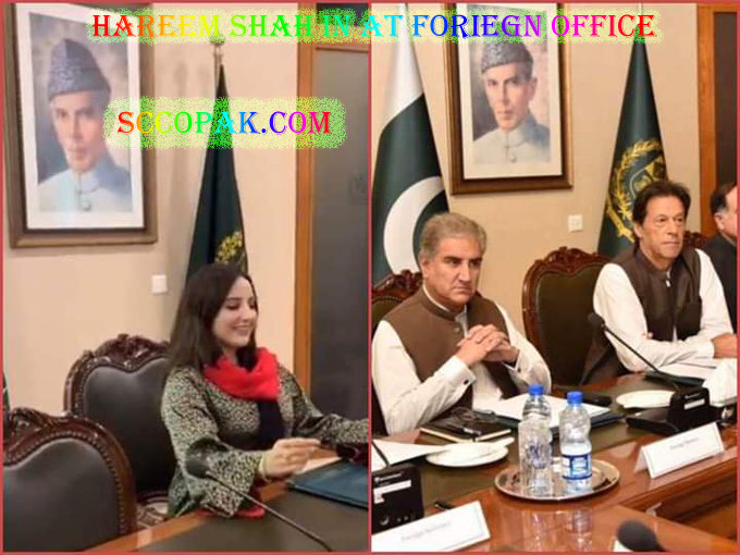 Hareem Shah Pic at Foreign Office