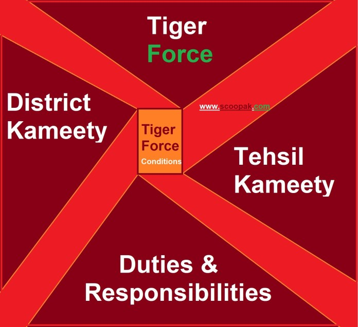 Duty for Tiger Force