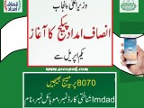 Punjab Insaf Imdad Program 2020