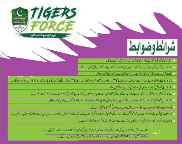 Tiger Force Duty & Responsibility