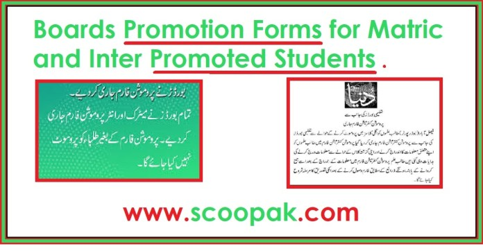 Boards Promotion Forms for Matric and Inter Promoted Students