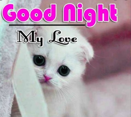 Beautiful Good Night Quotes Messages Collection 2021
