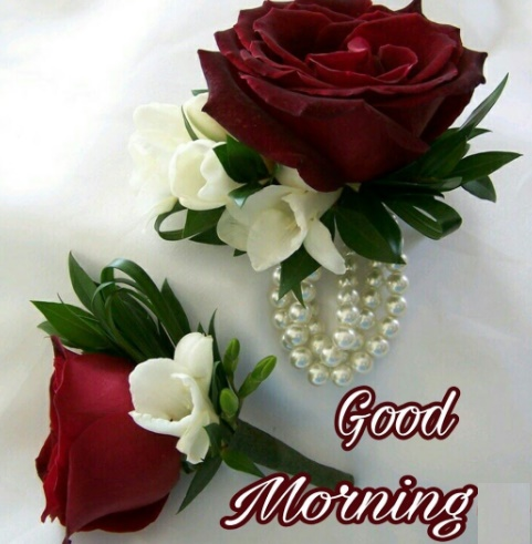 Good Morning Flowers with Messages 2021