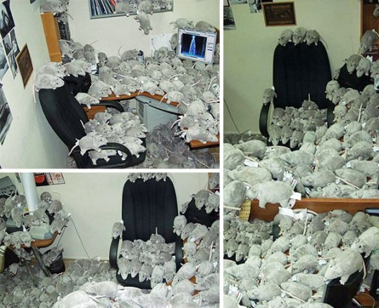 funny-aprils-fool-office-pranks-9