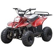 TAO-TAO-110cc-ATV-Fully-Automatic-Four-Wheelers
