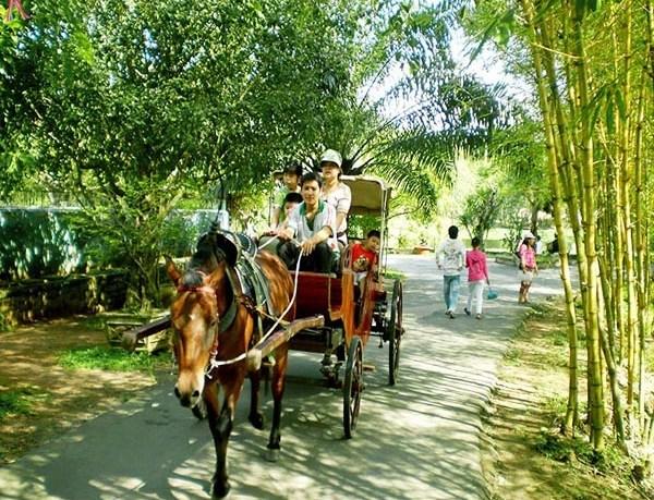 Riding horse cart