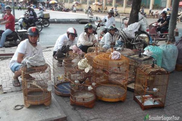 Thuan Kieu bird market