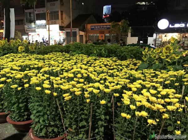 Yellow Daisy At Tet Flower Market At Night