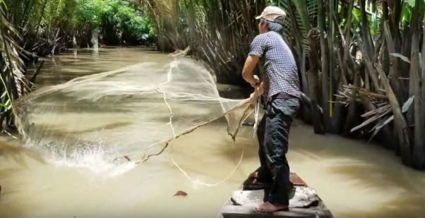 Catching Shrimps With CastNet