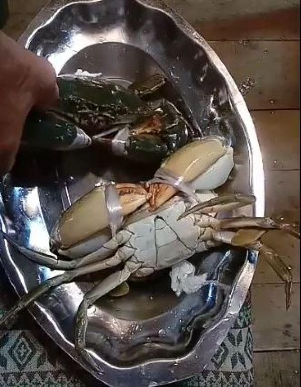 Vietnamese sea crab blood pudding