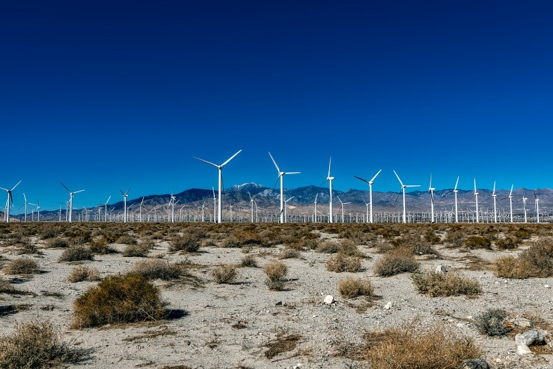 Wind farm in Palm Springs California.