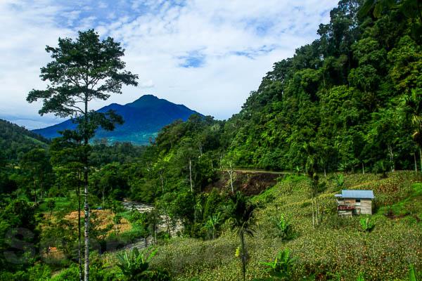 Jorong Talu - Kab. Pasaman Barat-4157