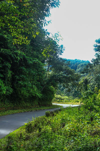 Jorong Talu - Kab. Pasaman Barat-4160