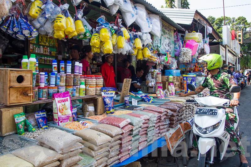 Pasar Burung Malang-9009