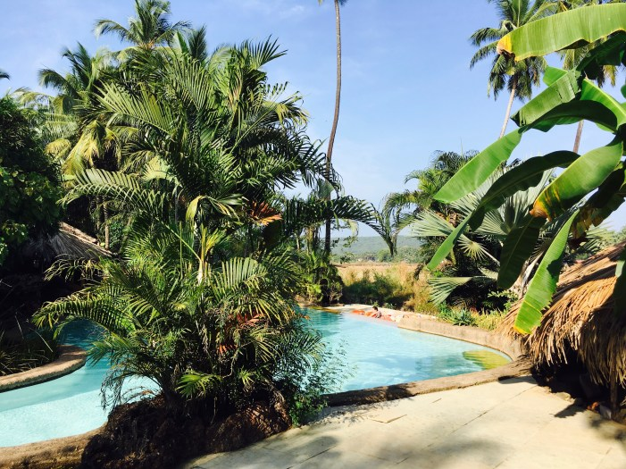 Piscina Eco Magic yoga resort Anjuna