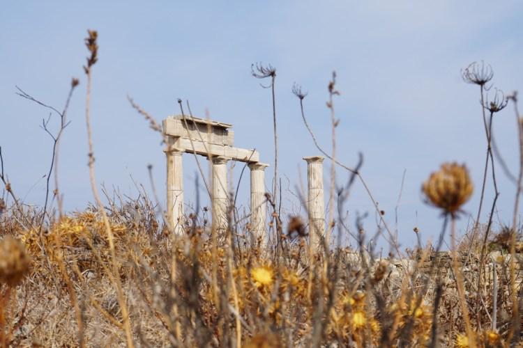 Delos Cicladi