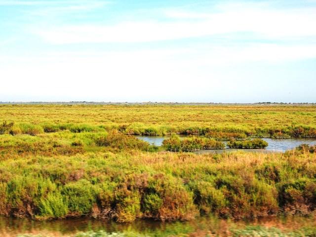 La Camague: natura selvaggia ed incontaminata