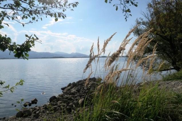 Cosa vedere sul Lago di Costanza