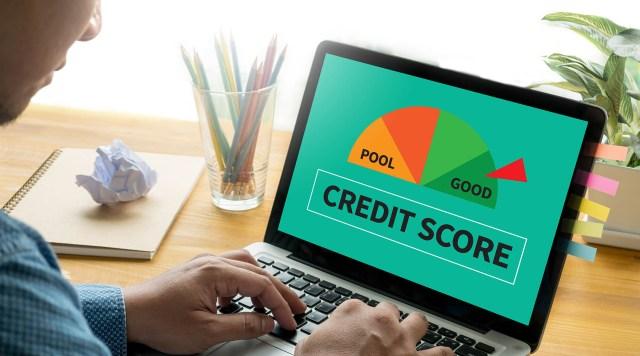 Man reviewing credit score on laptop