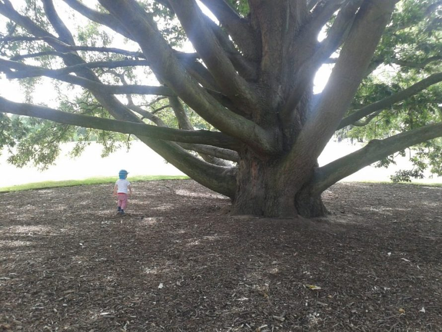 Kew Gardens London with Kids!