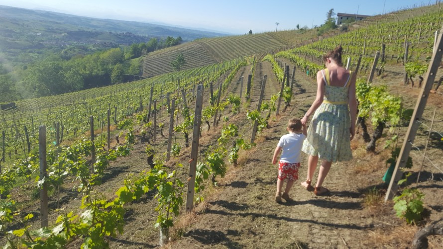Things to Do in Piedmont with Kids