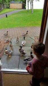 Scottish Family Travel blogger