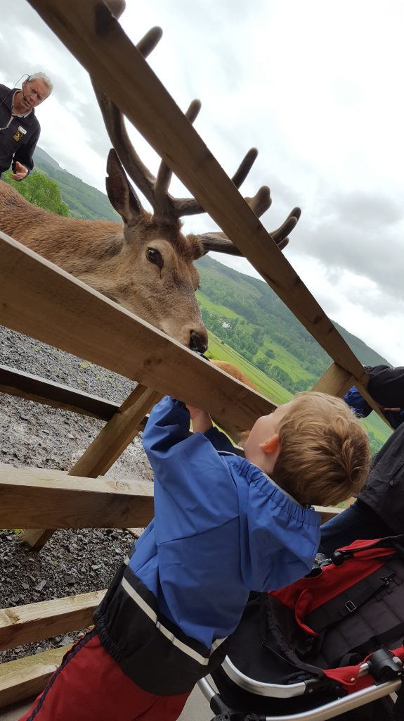What to Do in Perthshire with Kids