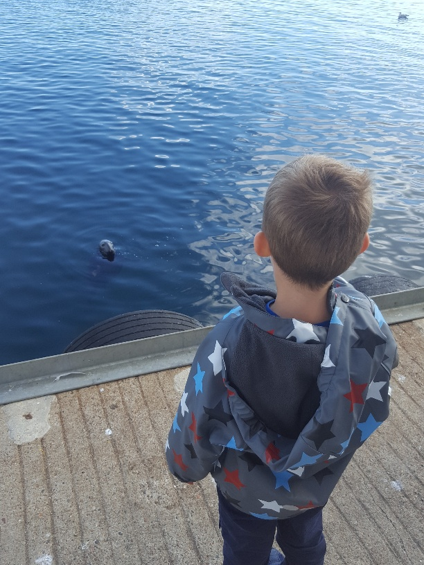 What to do in Shetland with Kids