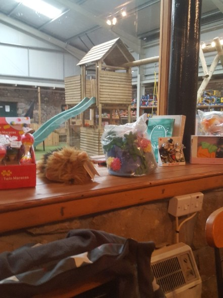View of Woodside Farm Play Area from the cafe
