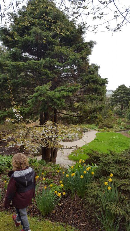 Cruickshank Botanic Gardens