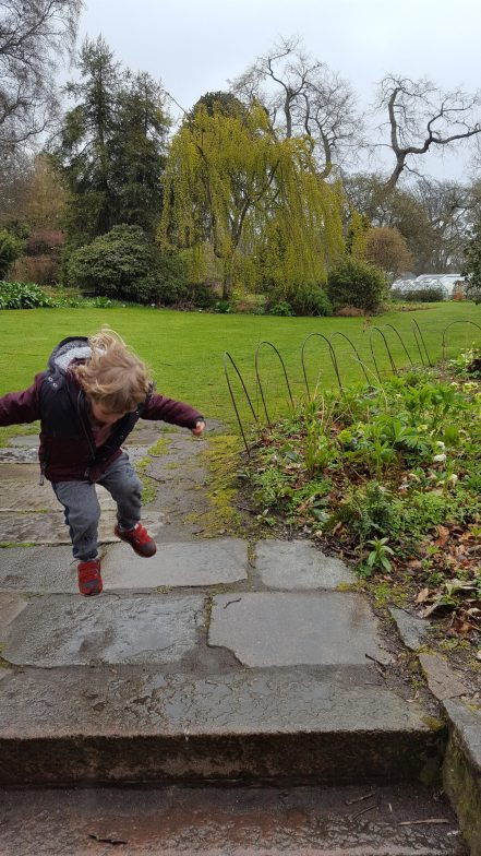 Getting bouncy in the botanics