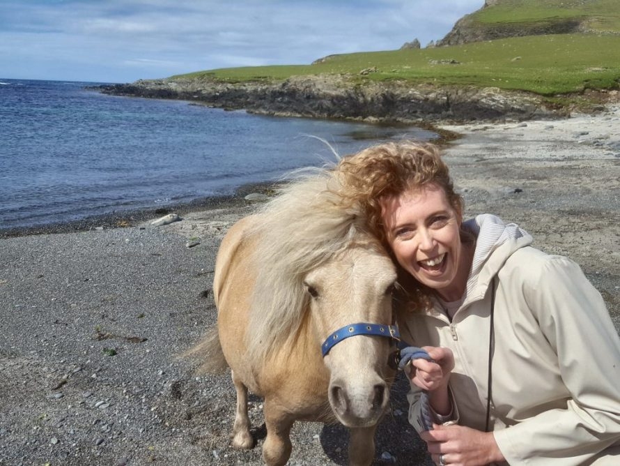 Where to meet Shetland Ponies in Scotland
