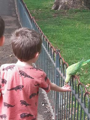 Making friends at St James Park