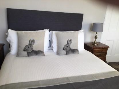 Rabbits bed
