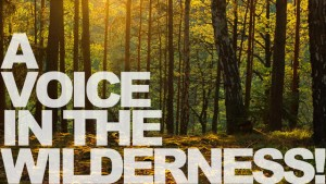 voice-in-the-wilderness