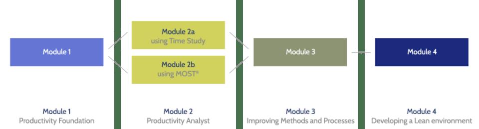 IMS Certificate course modules