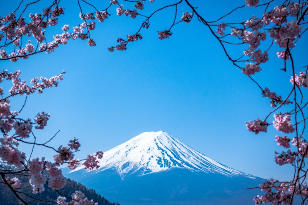 Visit Japan and a Japanese tea house