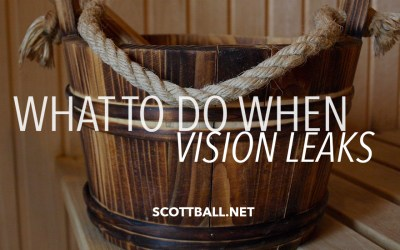 What to Do When Vision Leaks