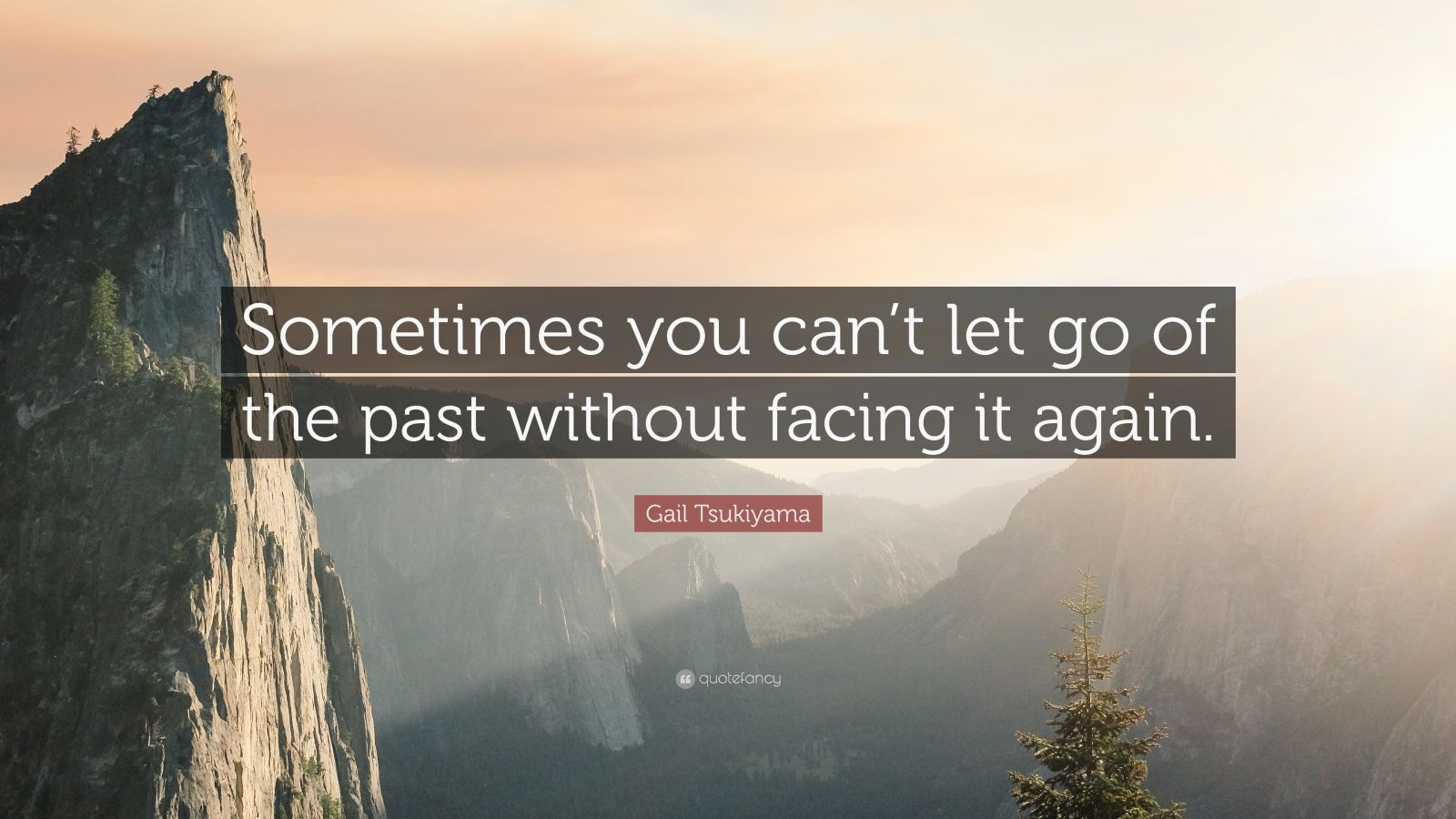 364625-Gail-Tsukiyama-Quote-Sometimes-you-can-t-let-go-of-the-past
