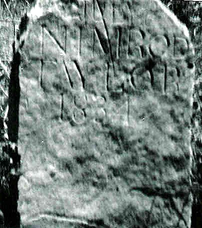 Nimrod TAYLOR, Sr. headstone, Carter Cemetery, Rye Cove, Virginia