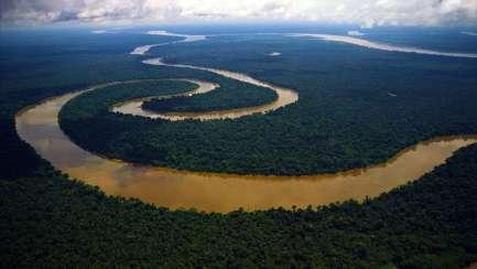 Peruvian-Amazon